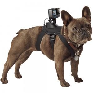 Крепление для собак GoPro Fetch Dog Harness